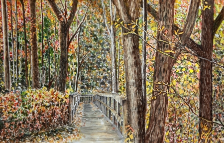 """Along the trial in Moranie State Park Pittsburgh PA 22x28"""""""